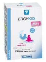 Ergykid Mag Poudre Solution Buvable 14 Sachets à Bordeaux