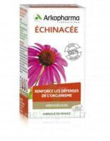 Arkogélules Echinacée Gélules B/45 à Bordeaux