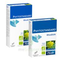 Pileje Phytostandard - Rhodiole 60 Gélules Végétales à Bordeaux