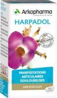 ARKOGELULES HARPAGOPHYTON, 150 gélules à Bordeaux