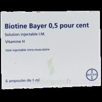 BIOTINE BAYER 0,5 POUR CENT, solution injectable I.M. à Bordeaux