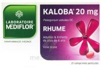 Kaloba 20 Mg Comprimé Pelliculé Plq/21 à Bordeaux