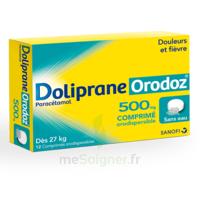 Dolipraneorodoz 500 Mg, Comprimé Orodispersible à Bordeaux