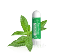 PURESSENTIEL RESPIRATOIRE Inhalation nasal 19 huiles essentielles à Bordeaux