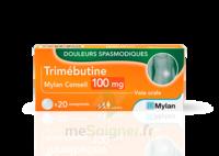 Trimebutine Mylan Conseil 100 Mg, Comprimé à Bordeaux
