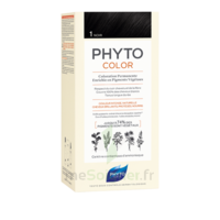 Phytocolor Kit Coloration Permanente 1 Noir à Bordeaux