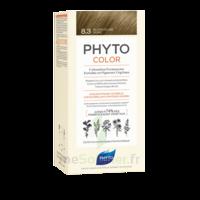 Phytocolor Kit Coloration Permanente 8.3 Blond Clair Doré à Bordeaux