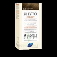 Phytocolor Kit Coloration Permanente 6.3 Blond Foncé Doré à Bordeaux
