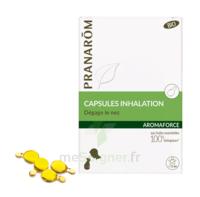 Aromaforce Caps Inhalation Bio B/15 + Inhalateur à Bordeaux