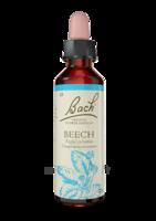 Fleurs De Bach® Original Beech - 20 Ml à Bordeaux