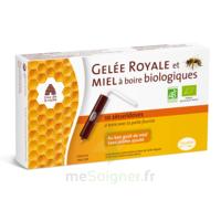 Pileje Gelée Royale & Miel à Boire Biologiques 10 Sécuridoses De 10ml à Bordeaux