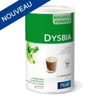Pileje Dysbia Saveur Chocolat Pot De 360g à Bordeaux