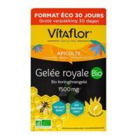 Vitaflor Bio Gelée Royale 1500mg Solution Buvable 30 Ampoules/15ml à Bordeaux