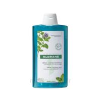 Klorane Menthe Aquatique Bio Shampooing Détox Fraicheur 400ml à Bordeaux